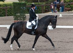 161023_Aust_D_Champs_Sun_Med_4.3_6850.jpg (FranzVenhaus) Tags: athletes dressage australia siec equestrian riders horses performance event competition nsw sydney aus
