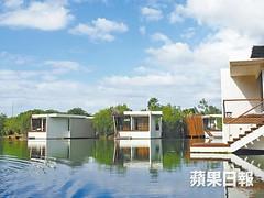 墨西哥自由行|紅樹林中的富豪級隱居|Apple Daily