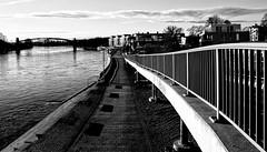 railing (Jt.Oldmn) Tags: magdeburg elbe