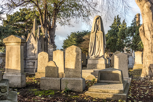 Mount Jerome Cemetery & Crematorium is situated in Harold's Cross Ref-100442