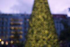 Dec062014_7508 (lordgogurt) Tags: christmas city blur building tree night evening focus san francisco holidays december bokeh dusk