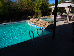 PC220680 (photos-by-sherm) Tags: california ca winter house pool swimming holidays rental palm springs residence