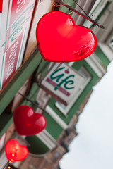 Heart of Life (Hkan Dahlstrm) Tags: life red photography se skne heart sweden sverige uncropped f28 ystad 2015 ef85mmf18usm skneln canoneos5dmarkii sek gamlastadensandskogen 5218012015151202