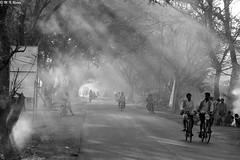 First light (mnreddy9) Tags: streetphotography blackandwhitephotography candidshot firstlight