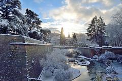Otsoen hila (Erre Taele) Tags: park parque snow nieve euskalherria basquecountry pamplona elurra navarra paysbasque iruña nafarroa lataconera nabarre