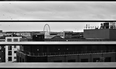 Through The Shutters (DominicSt) Tags: city blackandwhite liverpool landscape view apartment flat monotone shutters scape greyscale albertdocks