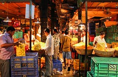 Dadar Flower Market / 11 (mariannaF) Tags: city travel flowers india flower asia market culture streetphotography documentary explore bombay mumbai flowermarket wholesale reportage dadar southasia travelphotography