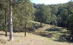 10, 651 Lower Buckrabendinni Road, Argents Hill NSW