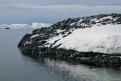 L1003117 (Roy Prasad) Tags: ocean travel cruise sea mountain snow ice expedition water rock landscape island penguin boat ship antarctica glacier iceberg zodiac prasad detaille detailleisland royprasad