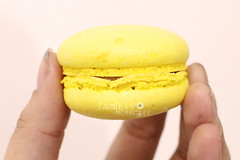IMG_0455 (Tamires Monsores) Tags: macarons comida culinria food doces