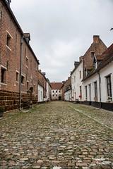 Diest 300716 13 (David Vanthienen) Tags: walk natu hike walking city stad diest hiking wandelen wandeling dieststadcitywandelingwandelenhikinghikewalkingwalknatuurnaturecitadelhalvemaandemerecocenterwarandebegijnhofbeguinage