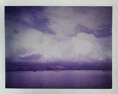 Those Clouds Though (dreamscapesxx) Tags: instant polaroid peelapart supershooter polaroid689film expired verypurpley boatsinthebay viewofdowntown skyline kenthompsonpark sarasotafl snapitseeit
