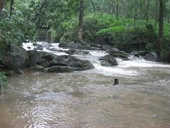 IMG_5428 (Gokul Chakrapani) Tags: waterfalls karnataka westernghats bolle charmadi