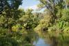 Утро. Река Истра. (constantine_fedoroff) Tags: nikon d80 5502000 mm f4056 утро река истра naturebynikon