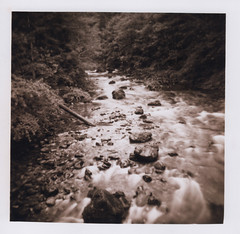 Opal Creek 19, Opal Creek Wilderness 2016 (Sara J. Lynch) Tags: sara j lynch opal creek wilderness black white holga 120n film water rocks