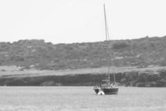 B&W (rainer.marx) Tags: leica bw beach strand lumix meer urlaub panasonic sw holliday spanien malorca calamillor fz1000