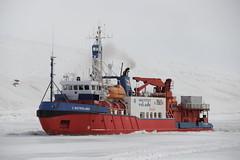 L'Astrolabe, Terre Adlie (Terres australes et antarctiques franaises) Tags: environnement astrolabe polaire taaf antarctique biodiversit dumontdurville terreadlie terresaustralesetantarctiquesfranaises