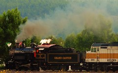 GCRR #26 returning from the Grand Canyon today. (Douglas H Wood) Tags: nps 8242015 grandcanyonrailway gcrr williams arizona steam locomotive centennial 100year birthday railroad