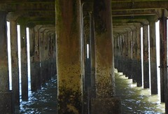Under-the-pier-2 (Kathy Waugh) Tags: architecture column water pier