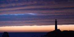 [Twilight] (miltonsun) Tags: lighthouse pigeonpointlighthouse northerncalifornia shore highway1 seascape bay ngc ocean westcoast sunset landscape clouds sky seaside