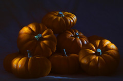 Painting with Light (thor_thomsen) Tags: 120916ii pumpkins hosemaster studio stillife colour