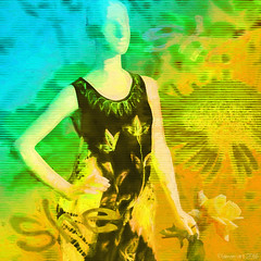 She (Lemon~art) Tags: mannequin woman rose flower texture lines colour summer autumn text flora blue yellow she