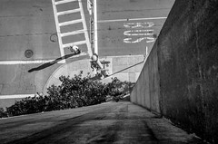 BUS (bradmer12) Tags: ithaca bw black white monochrome nikon ny new york city cityscape