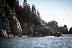 Kenai Fjords National Park (mlhell) Tags: alaska kenaifjords kenaifjordsnationalpark landscape nature seascape