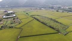 Guanxi Township, Hsinchu (James Tung) Tags: taiwan hsinchu guanxi 台灣 新竹 關西鎮 空拍