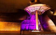 Museo Guggenheim Bilbao (saleterrier) Tags: guggenheim museo bilbao kraftwerk night nightscene longexposure museoguggenheim bizkaia