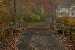 Getting into the Halloween Spirit (madre11) Tags: fall foggymornings bridges fogandfall fallcolors fallmorningsinnewengland