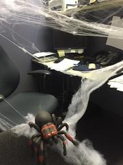 Creepy Crawly (ParkerRiverKid) Tags: spidery spider spiderweb atwork halloween decorations cobweb scavenger9 ansh74