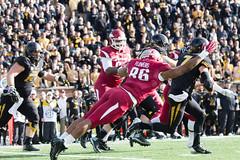 untitled (christinalong15) Tags: college sports football athletics arkansas sec collegiate razorbacks