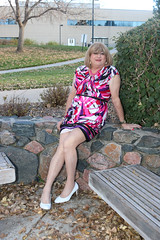 new108724-IMG_9695t (Misscherieamor) Tags: park tv sitting feminine cd tgirl transgender mature sissy tranny transvestite crossdress ts gurl tg travestis travesti travestie m2f xdresser printdress tgurl slipshowing