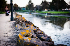 The Path (FranciscoEvangelista) Tags: park family lake nikon rocks path walk lisbon the jamor d7100 f18g