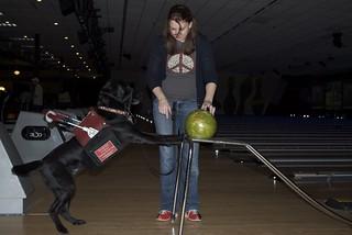 Bowling Champ!