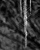 Starry-Ice---BW (Daxcat) Tags: winter light cold ice glitter icicle icesickles