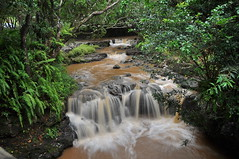 Waterfall at Valle des 23 couleurs (parue85) Tags: waterfall wasserfall mauritius cascade valledes23couleurs
