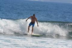 DSC_0056 (aliciadesign) Tags: surf whales bigisland honolii