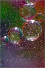 Let it Snow (stuant63) Tags: art water ball droplets drops colours balls bubbles sphere round oil spheres globule globules tapwater cookingoil stuant63 stuartanthony