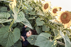 Sunflowers (Laura__0000) Tags: world life city friends boy sunset wild people favorite color nature argentina colors field childhood kids rural canon dark children t fun outside outdoors atardecer person persona photography countryside photo kid lowlight colorful december colours exterior child shot gente image dusk availablelight vivid lifestyle style images nios colores explore human sunflower favoritas campo popular infancia nio hangout airelibre girasoles fotografaencolor colorimage colorshot imagenencolor canon7d coronelvidal