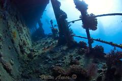 Giannis D. (Victor Amor) Tags: redsea egypt wideangle egipto wreck marrojo nikond80
