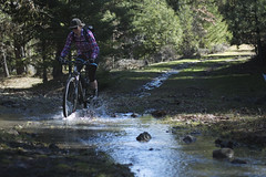Lots of stream crossings! (gabriel amadeus) Tags: white mountain bike bicycle oregon river ride wildlife mountainbike mount explore dirt valley mtb mthood area hood roads mounthood gravel tygh wamic