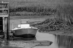 Mud Flat (Gabriel FW Koch (fb.me/FWKochPhotography on FB)) Tags: boat outdoor marsh outside mud mudflat grass reeds hull bow docked bw eos dof canon telephoto lseries texture
