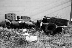 DSR2-063-30 (David Swift Photography Thanks for 16 million view) Tags: abandoned film philadelphia trash 35mm furniture streetphotography dump tires ilfordxp2 loftdistrict yashicat4 abandonedfurniture eraserhood davidswiftphotography
