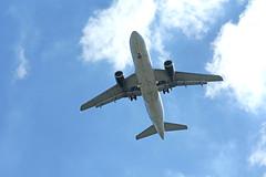 Frontier Airbus Landing (craigsanders429) Tags: aircraft landingaircraft frontierairlines airbus clevelandhopkinsinternationalairport olmstedfallsohio jets jetliners airplanes cloudsandsky