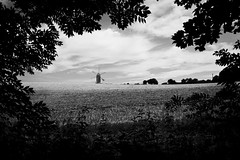 The view from Ashcombe Hollow (Mr Richie) Tags: birthday camping summer blackandwhite bw holiday monochrome downs sussex south housedean