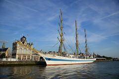 Tall Ship's Race 2016 Mir DST_4614 (larry_antwerp) Tags: mir antwerp antwerpen       port        belgium belgi          schip ship vessel        schelde        tallshipsrace