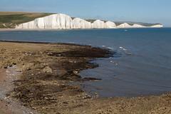 Hope Gap   Seven Sisters walk   July 2016-52 (Paul Dykes) Tags: southdowns southdownsway southcoast coast cliffs sea shore coastal englishchannel sussex england uk seaside sun sunnyday chalk downs hills countryside