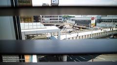 2016 JAPAN 0627(EOSM3)-36 (sun_line) Tags: 日本 關西 japan 枚方市 蔦屋書店 bookstore books